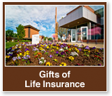 Rollover image of freshly planted flowers in front of a building. Link to Gifts of Life Insurance.